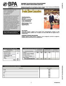 BPA Audit January-June 2011